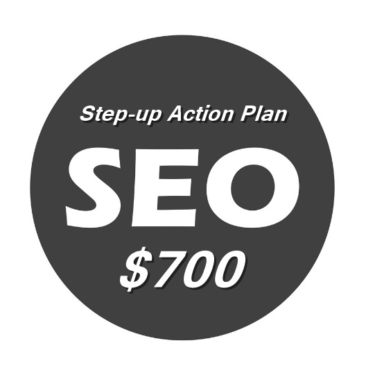 SEO Step-up Action Plan $700