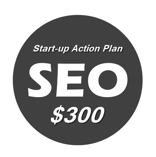 SEO Start-up Action Plan $300